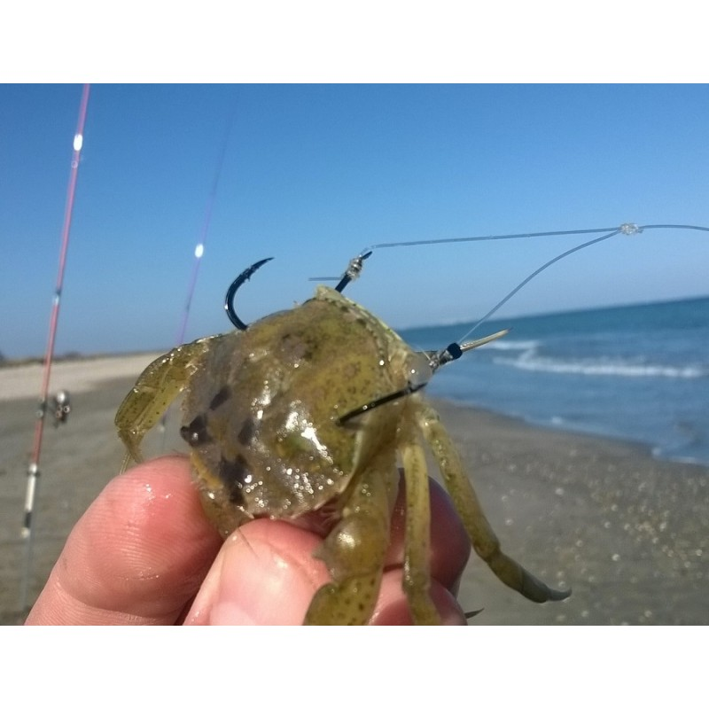 montage special crabe flashmer